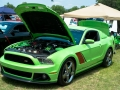 2012_carshow-30