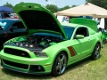 2013-carshow-web-40